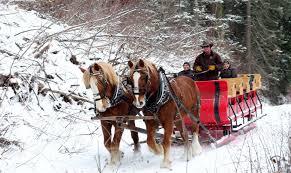 Vermont sleigh ride